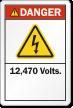 12,470 Volts ANSI Danger Label