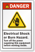 Electrical Shock Or Burn Hazard ANSI Danger Label