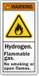 Hydrogen Flammable Gas, No Smoking ANSI Warning Label
